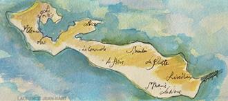 Logo Notre Ile de Ré