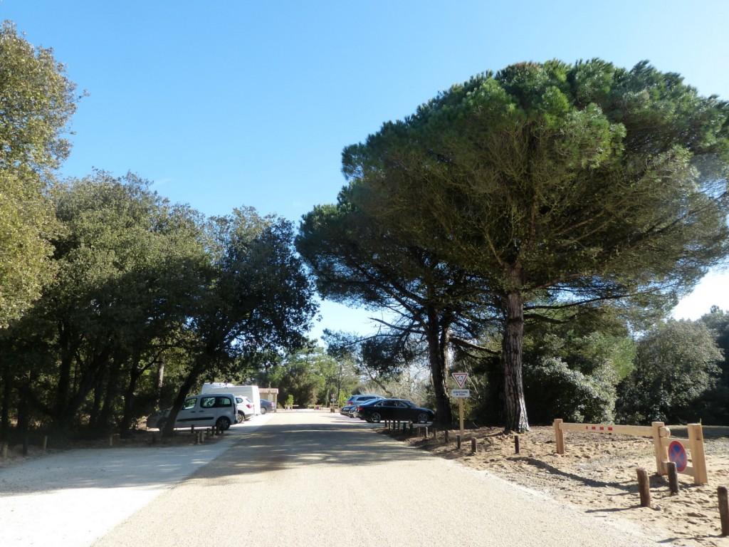 Les Portes-en-Ré - Parking de Trousse-Chemise - 21 février
