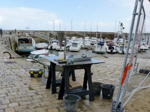 Port de La Flotte - 14 septembre 2015