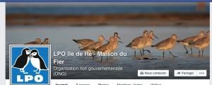 Facebook LPO Ile de Ré - Maison du Fier