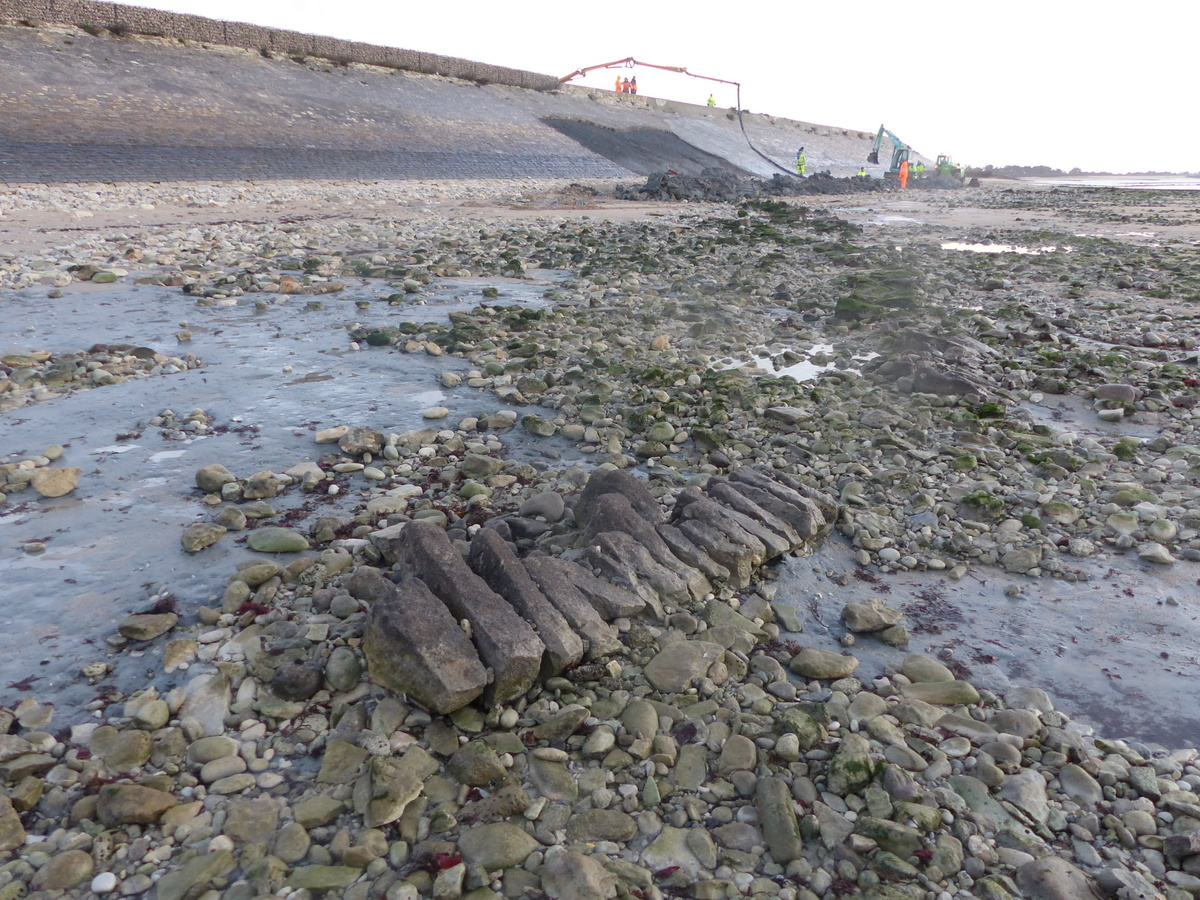 Ars - Chemin de pierres Digue de la Loge du Gué - 6 janvier 2016