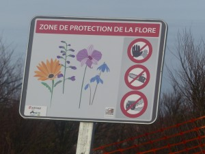 Digue des Doreaux - Panneau de protection de la flore - 19 janvier