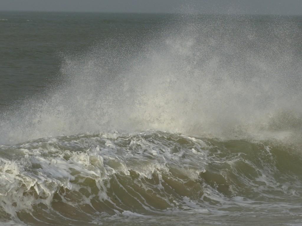 Mer forte - 8 janvier 2016