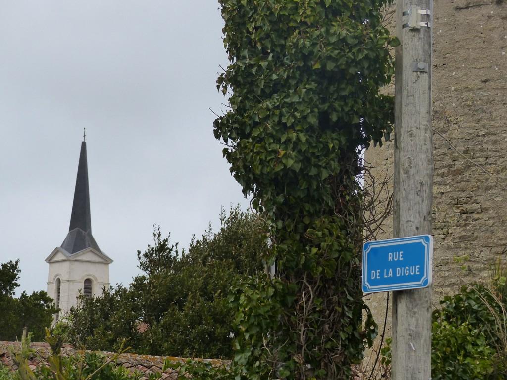Rue de la Digue - Saint-Clément des Baleines - Rue de la Digue - 2 février 2016