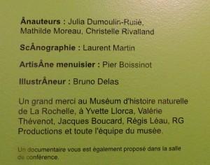 Musée Ernest Cognaq- Expo ânes - 6 avril 2016