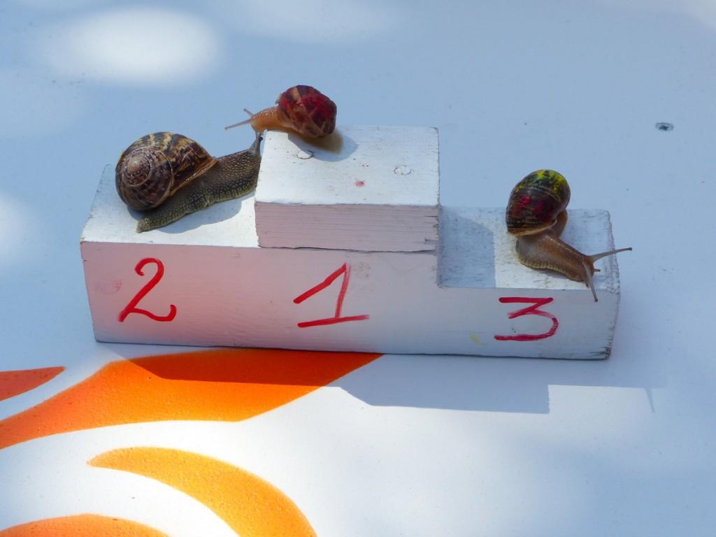 Loix - Course d'escargots - 15 mai 2016