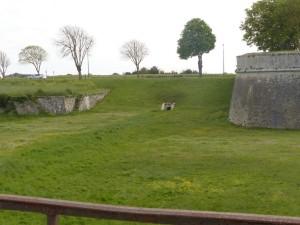 Remparts de saint-Martin de Ré - 21 avril 2016
