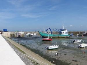 Port de La Flotte - La Trézence - 7 juin 2016