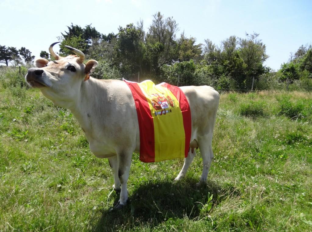 Loix - Clochette drapée Espagne - 8 juin 2016
