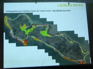 Diapo présentation Inventaire Ile de Ré - 26 juillet