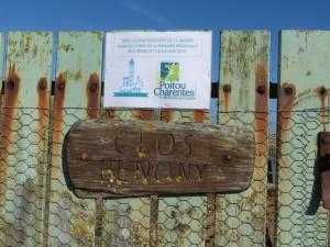 Saint-Clément des Baleines - Clos Benony - 3 septembre 2016