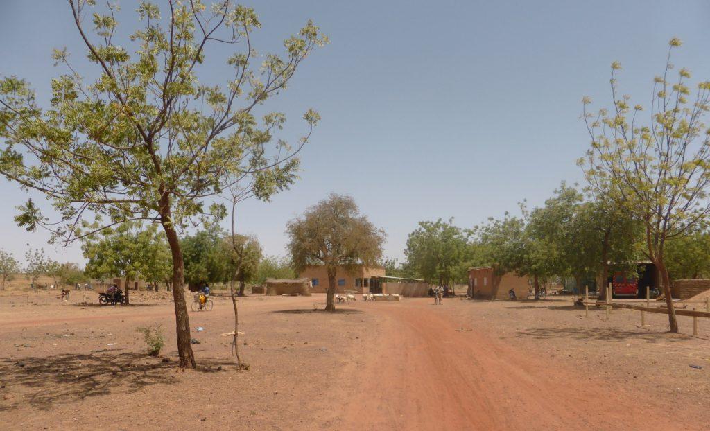 Arbollé - Burkina Faso