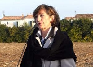 Martine Lesage - DGA - Immobilière 3F - 12 décembre 2016
