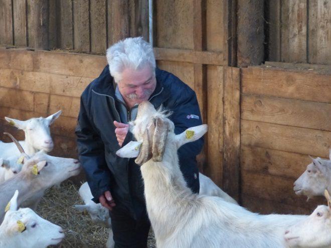 En voilà un qui murmure à coup sûr à l'oreille des chèvres...