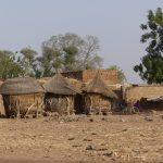 Un mois dans la brousse du Burkina Faso, à Arbollé