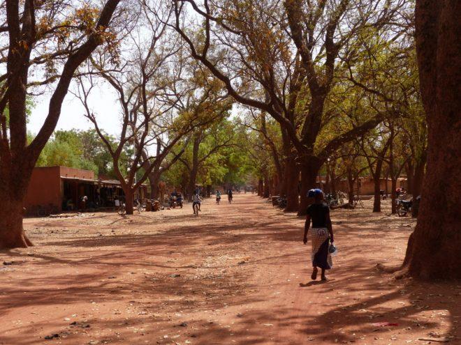 Burkina Faso - Arbollé - 22 février 2018