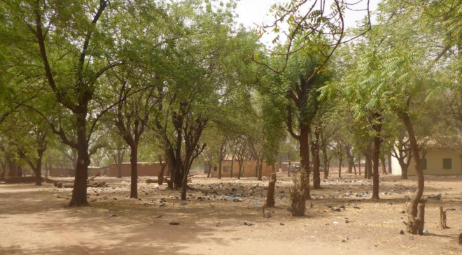 Arbollé - Burkina Faso - février 2019