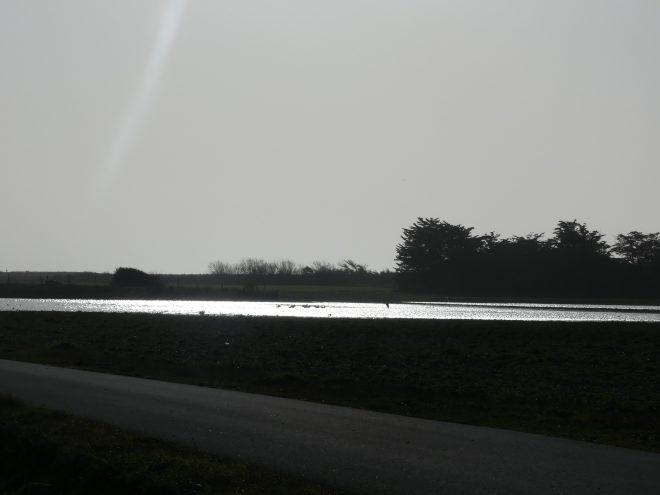 Saint-Clément - Eau dans les champs - 26 décembre 2019