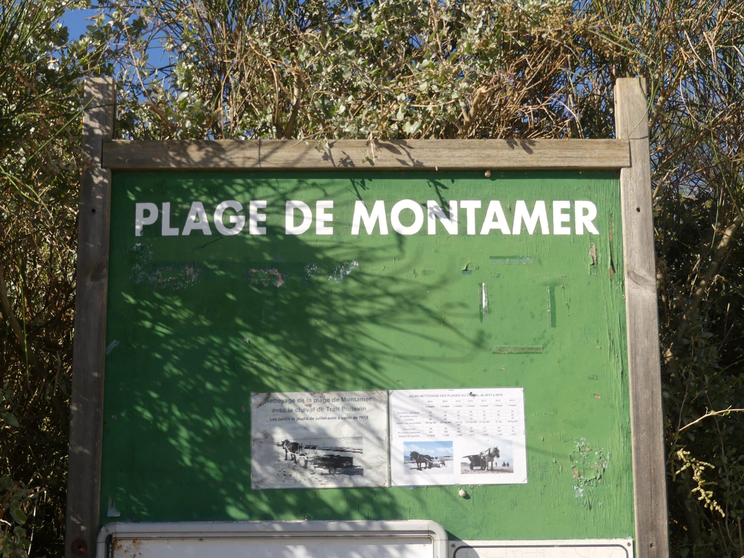 Sainte-Marie de Ré - Panneau plage de Montamer - 23 octobre 2020