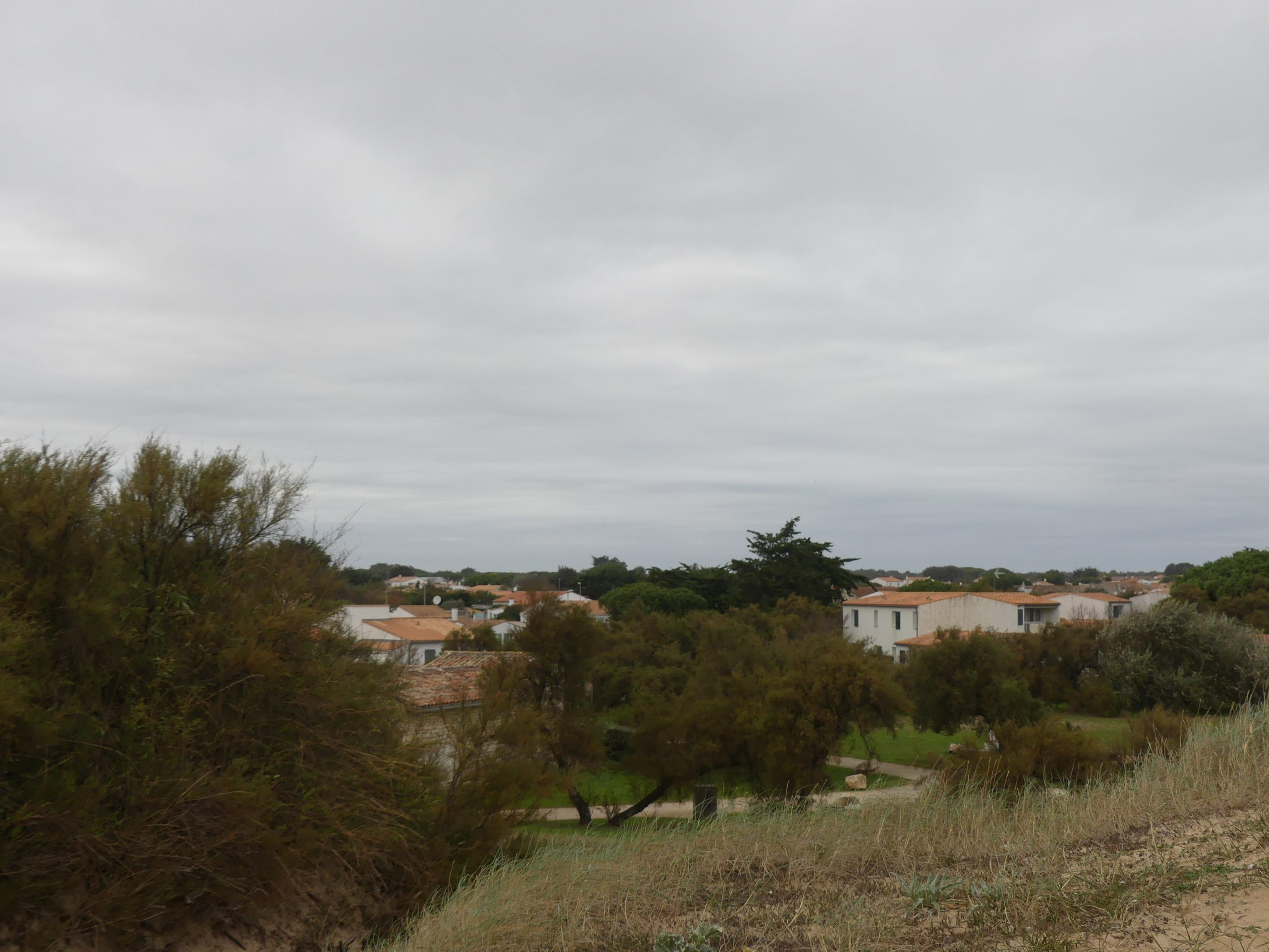 Sainte-Marie de Ré - Montamer - 24 octobre 2020