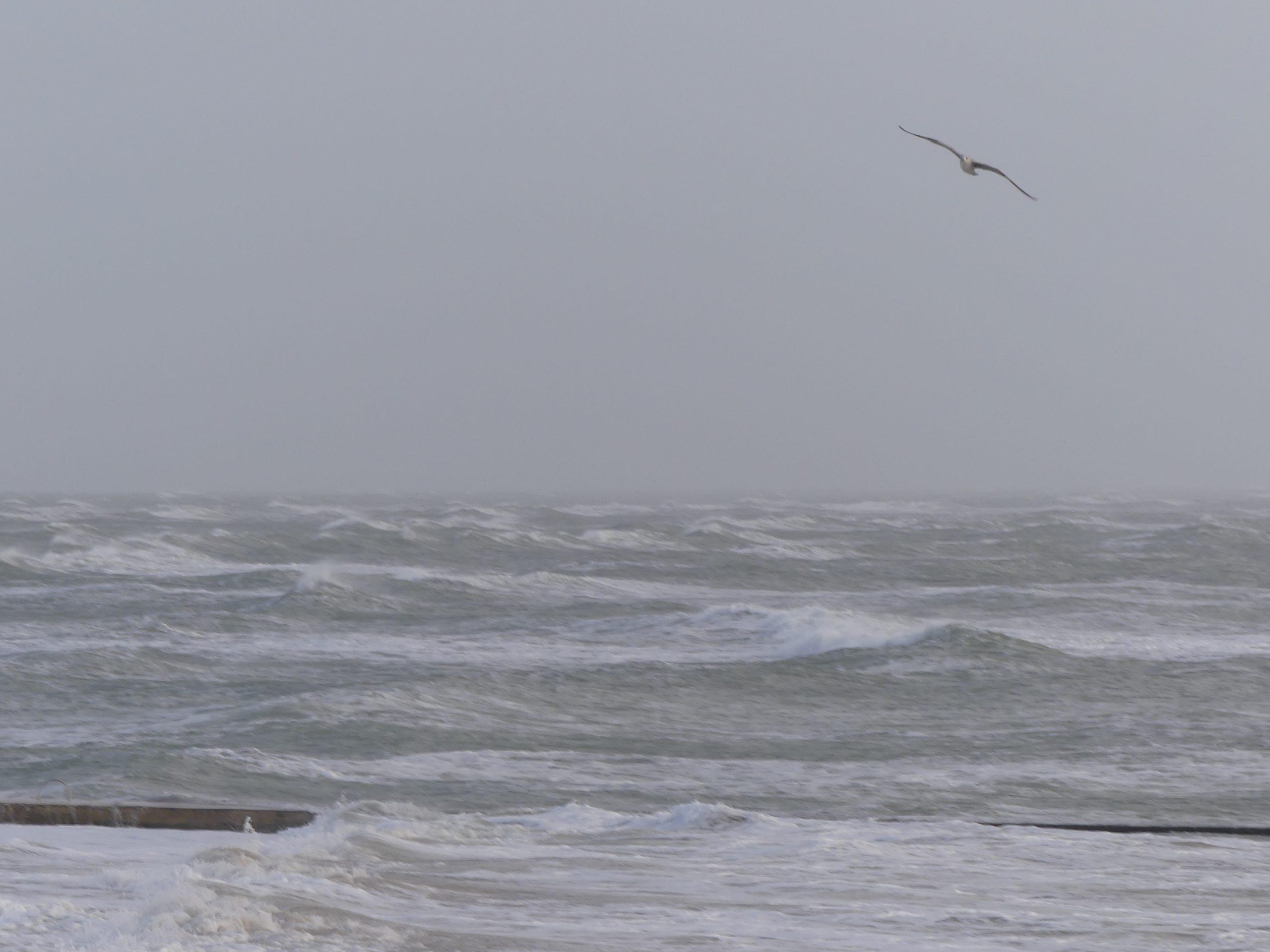 Météo 2021 - 28 décembre 2020 - Loix - Mer