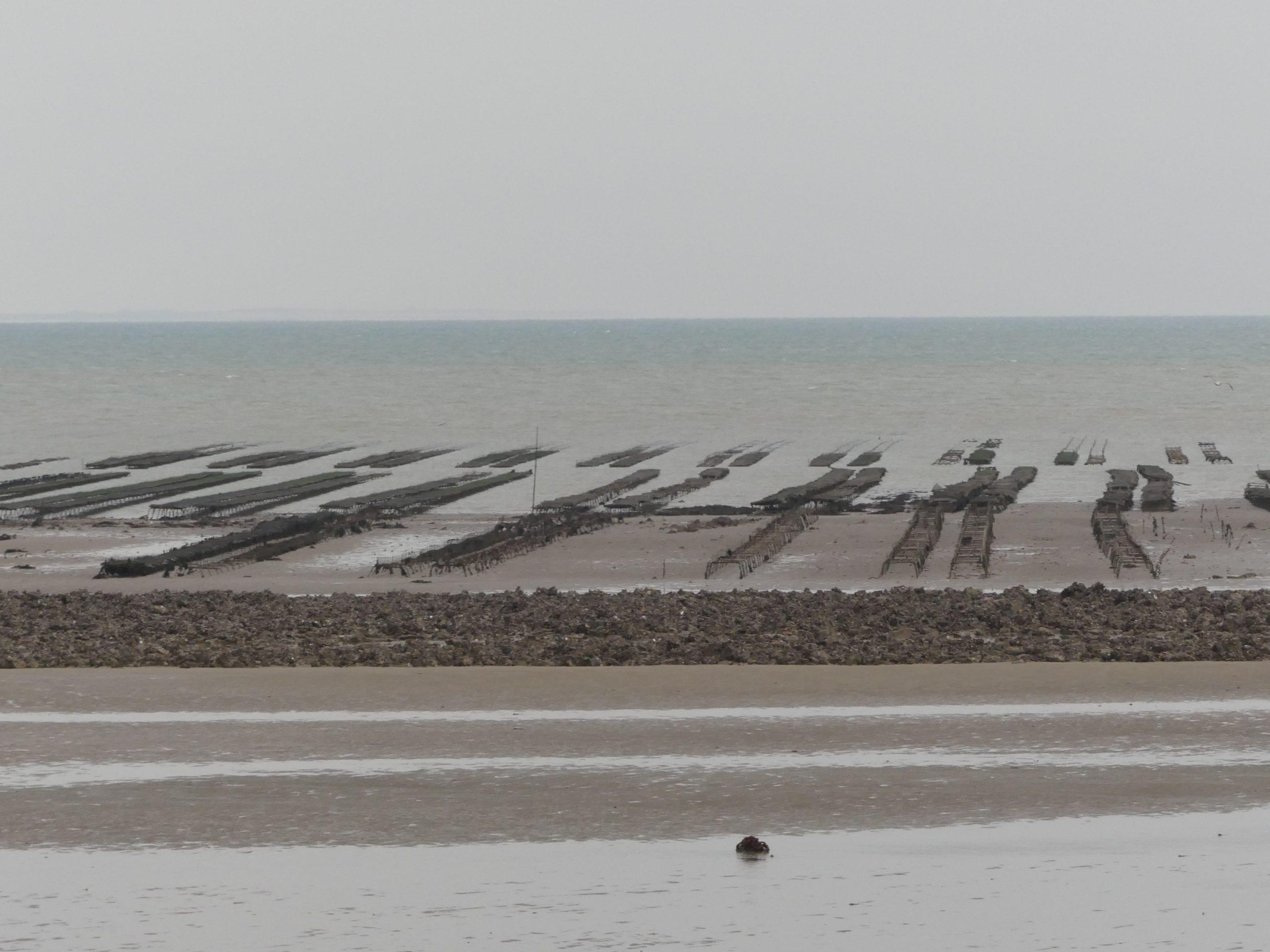 Météo 2021 - 4 janvier 2021- La Flotte - Mer