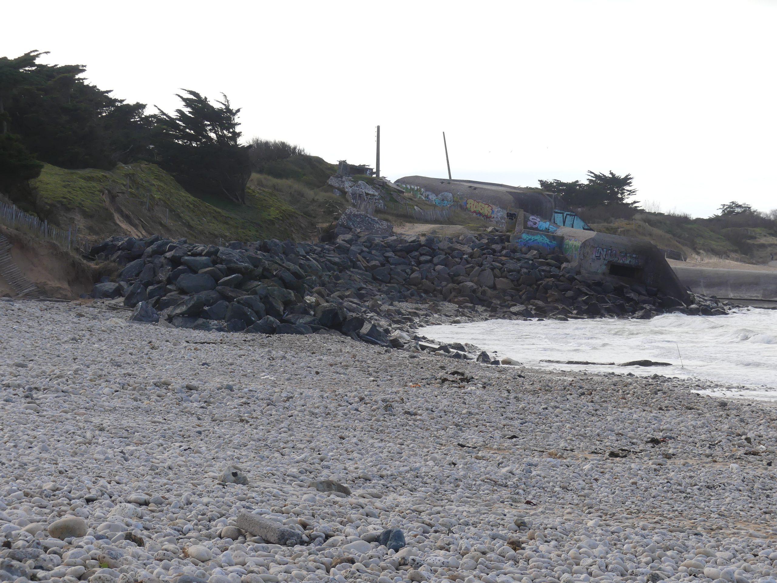 Saint-Clément des Baleines - Zanuck - 7 février 2021