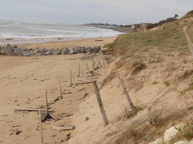Saint-Clément des Baleines - Côte sauvage - 14 février 2021