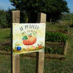 Savez-vous planter les fèves ?
