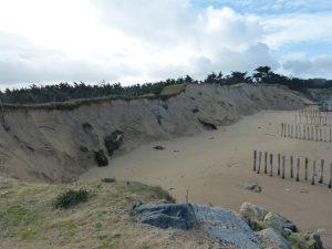 St-Clément des Baleines - Pas de Zanuck - 7 février 2014