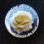 Une rose nommée Rivedoux-Plage