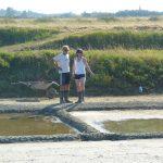 Les sauniers bichonnent le marais salant