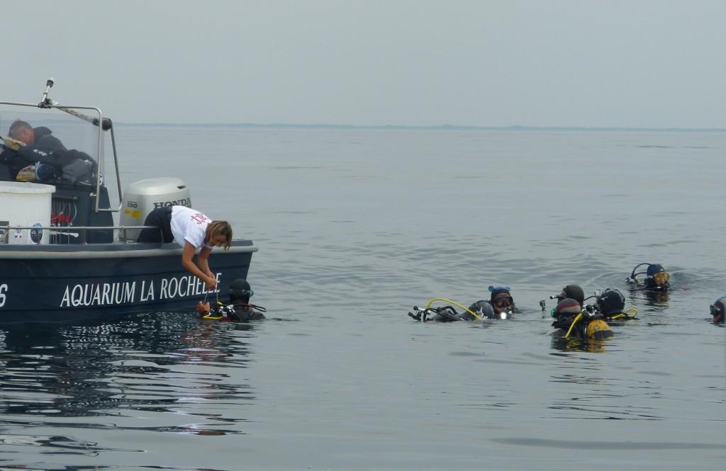 Lâcher de homards - 23 juin 2014
