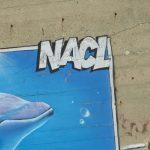 NACL colore les blockhaus rétais
