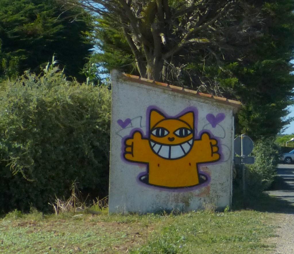 M. CHAT à Ars-en-Ré - Août 2014