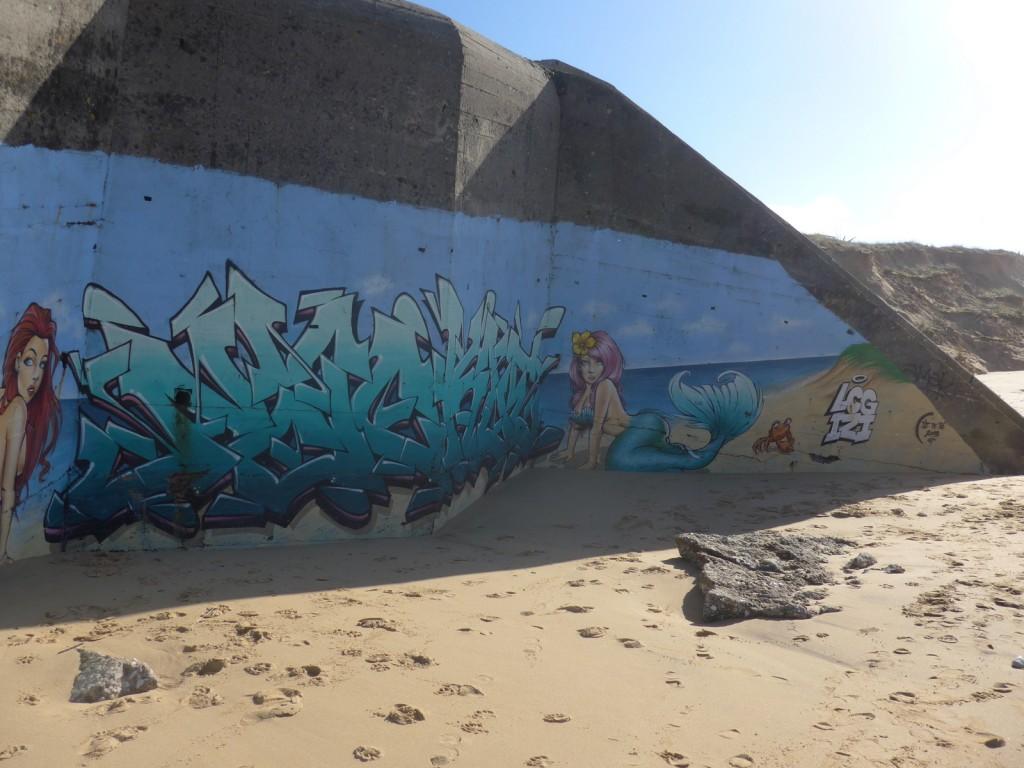 Graffeur NACL - Sirènes à la Conche des Baleines
